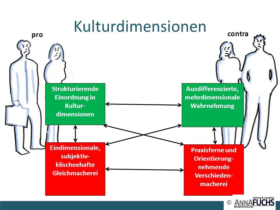 Kulturdimensionen Strukturierende Einordnung in Kultur- dimensionen Praxisferne und Orientierung- nehmende Verschieden- macherei Ausdifferenzierte, me