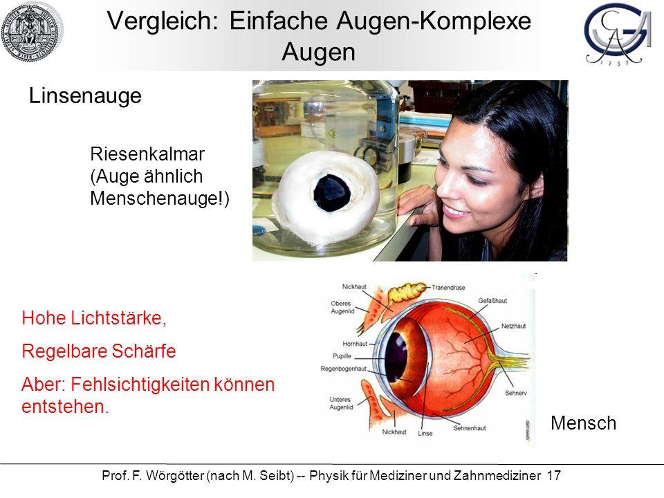 Prof. F. Wörgötter (nach M. Seibt) -- Physik für Mediziner und Zahnmediziner 17 Linsenauge Riesenkalmar (Auge ähnlich Menschenauge!) Mensch Hohe Licht