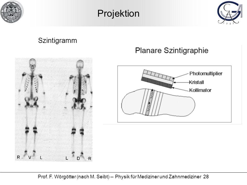 Prof. F. Wörgötter (nach M. Seibt) -- Physik für Mediziner und Zahnmediziner 28 Projektion Szintigramm