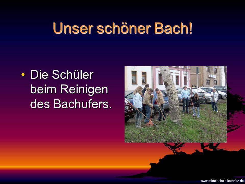 Unser schöner Bach.