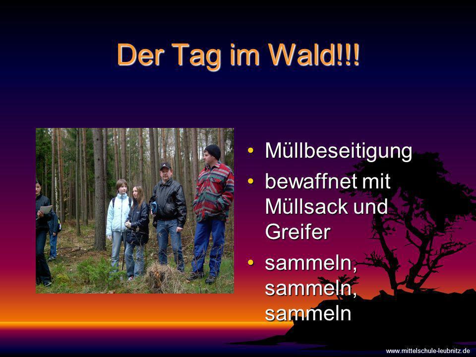 Der Tag im Wald!!.
