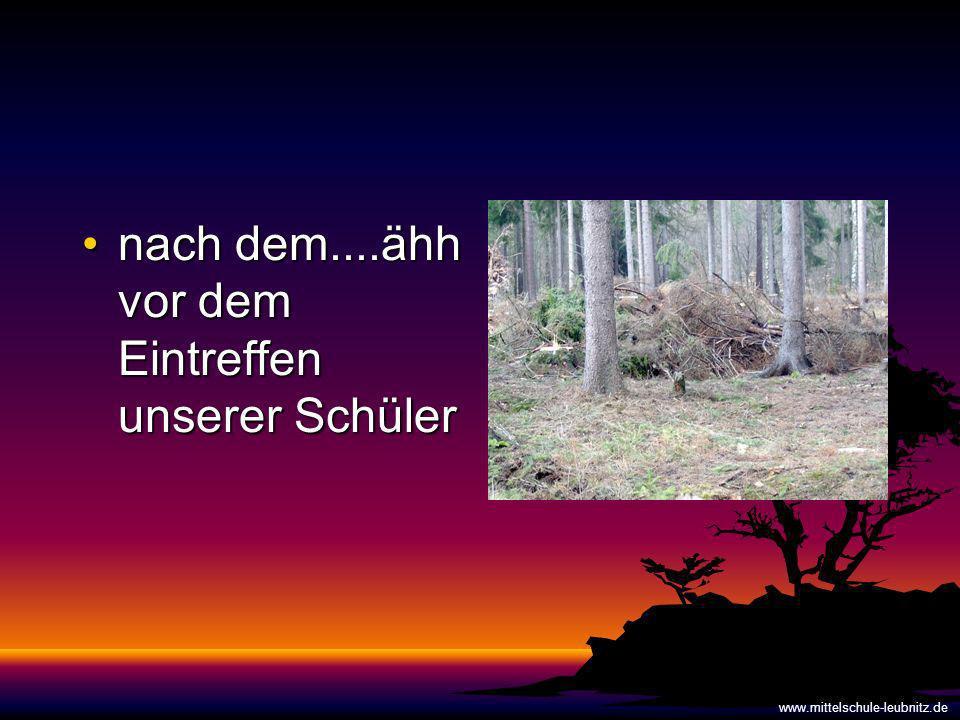 nach dem....ähh vor dem Eintreffen unserer Schülernach dem....ähh vor dem Eintreffen unserer Schüler www.mittelschule-leubnitz.de