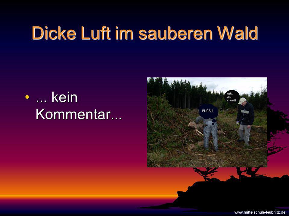 Dicke Luft im sauberen Wald... kein Kommentar...... kein Kommentar... www.mittelschule-leubnitz.de