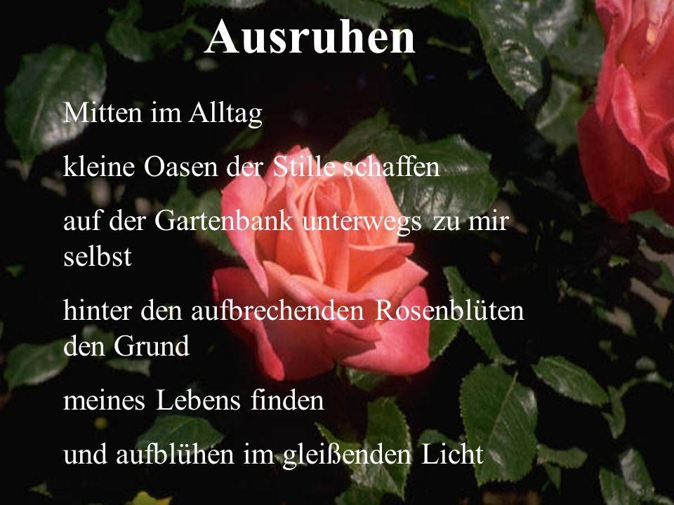 Ausruhen Mitten im Alltag kleine Oasen der Stille schaffen auf der Gartenbank unterwegs zu mir selbst hinter den aufbrechenden Rosenblüten den Grund meines Lebens finden und aufblühen im gleißenden Licht