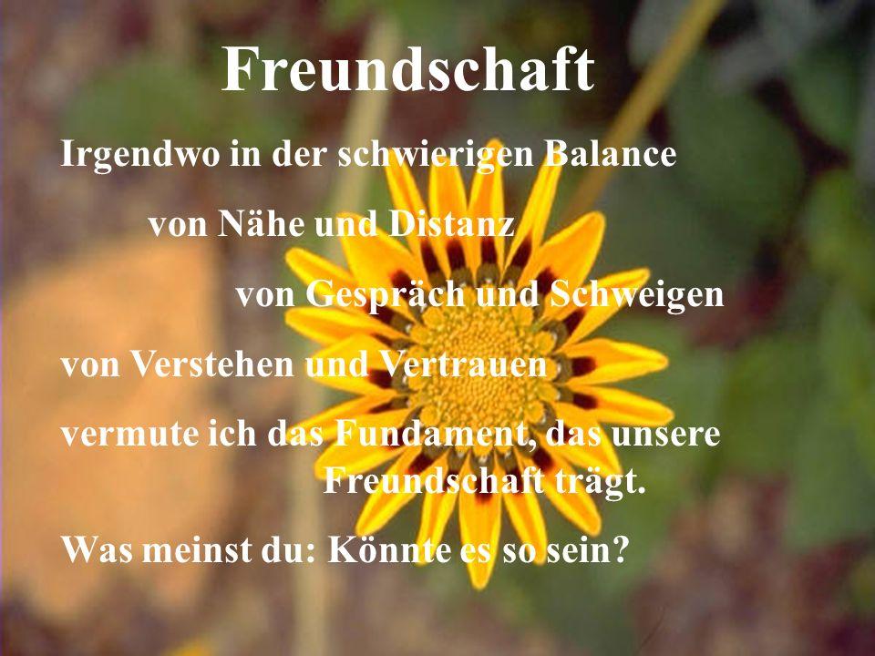 Freundschaft Irgendwo in der schwierigen Balance von Nähe und Distanz von Gespräch und Schweigen von Verstehen und Vertrauen vermute ich das Fundament, das unsere Freundschaft trägt.