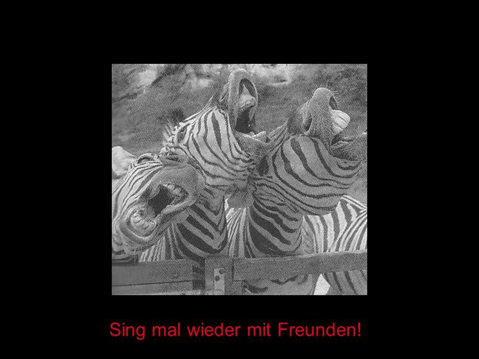 Sing mal wieder mit Freunden!