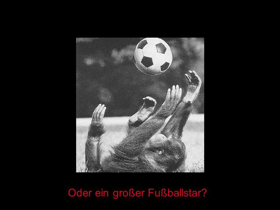 Oder ein großer Fußballstar?