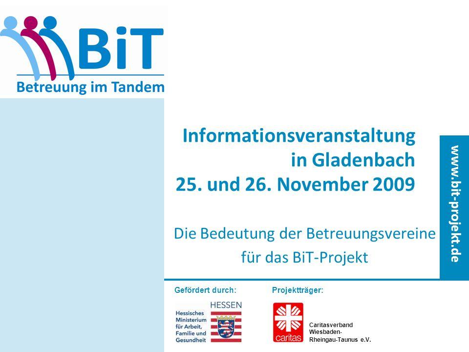 www.bit-projekt.de 23.11.09 BiT-Projekt12 Die Arbeit mit den Ehrenamtlichen Abschluß einer Kooperationsvereinbarung Betreuungsplanung zu Beginn Verlaufskontrolle Regelmäßige Abstimmungsgespräche zwischen den Tandem-Partnern Gruppengespräche Aktenführung/Duplex-Akte Administrative Unterstützung