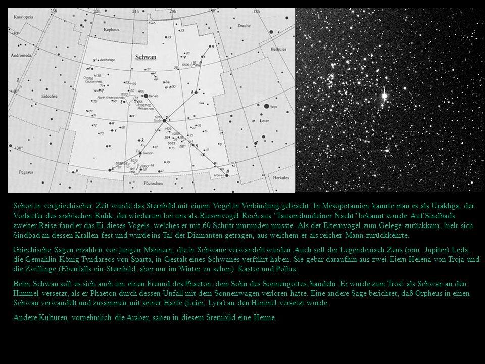 Deepsky: Da das Sternbild Schwan mitten in der Milchstraße liegt, sind in ihm keine Galaxien zu finden, sie werden von unserer Milchstraße verdeckt, dafür finden sich in ihm viele Nebel, Offene Sternhaufen, Kugelsternhaufen, Doppelsterne und alles was unsere Heimatgalaxie sonst noch zu bieten hat.