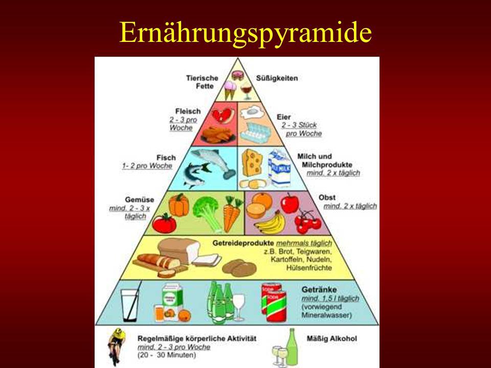 An der Basis stehen die Stärke enthaltenden Grundnahrungsmittel Auf der nächst höheren Ebene befinden sich Gemüse und Obst Die dritte Stufe nehmen eiweißreichen Nahrungsmittel einerseits, sowie Fleisch, Fisch, Geflügel, Eier, Nüsse und Bohnen An der Spitze der Pyramide sind Fette, Öle und Zucker zu finden