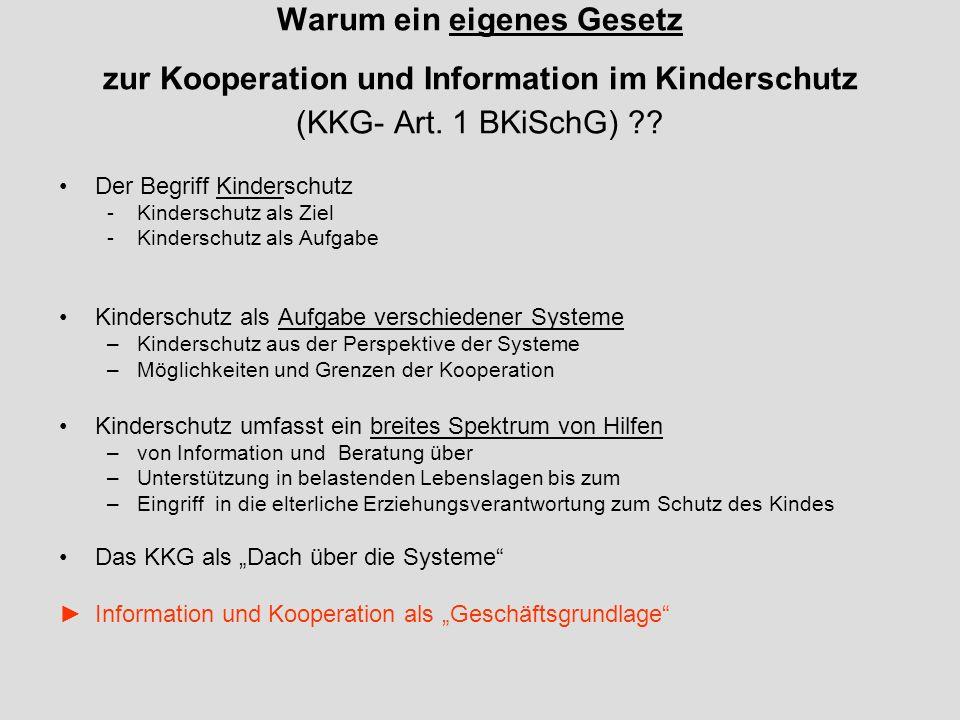 Warum ein eigenes Gesetz zur Kooperation und Information im Kinderschutz (KKG- Art.