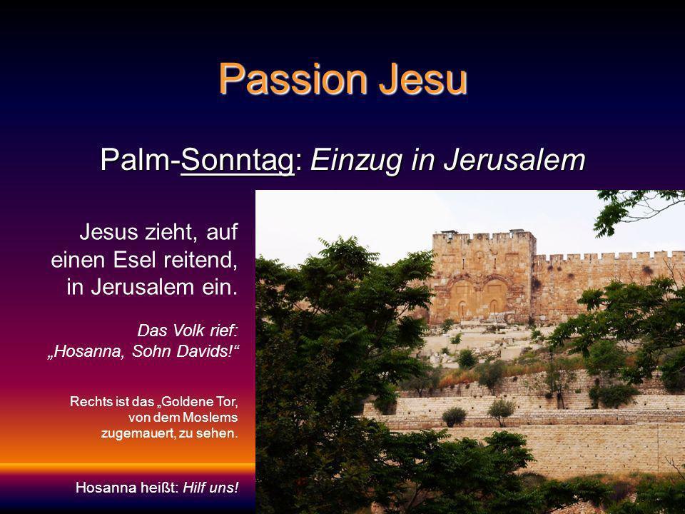 Palm-Sonntag: Einzug in Jerusalem Jesus zieht, auf einen Esel reitend, in Jerusalem ein.