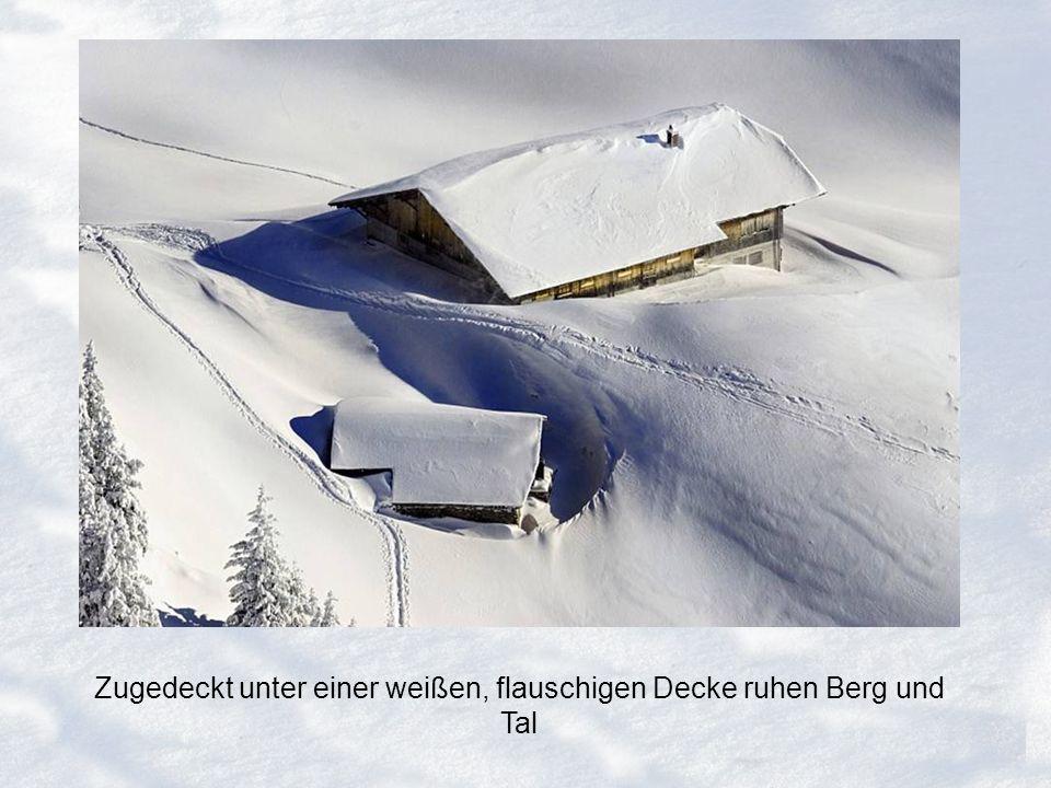 Zugedeckt unter einer weißen, flauschigen Decke ruhen Berg und Tal