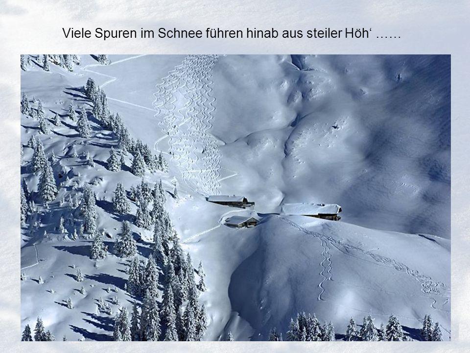 Viele Spuren im Schnee führen hinab aus steiler Höh ……