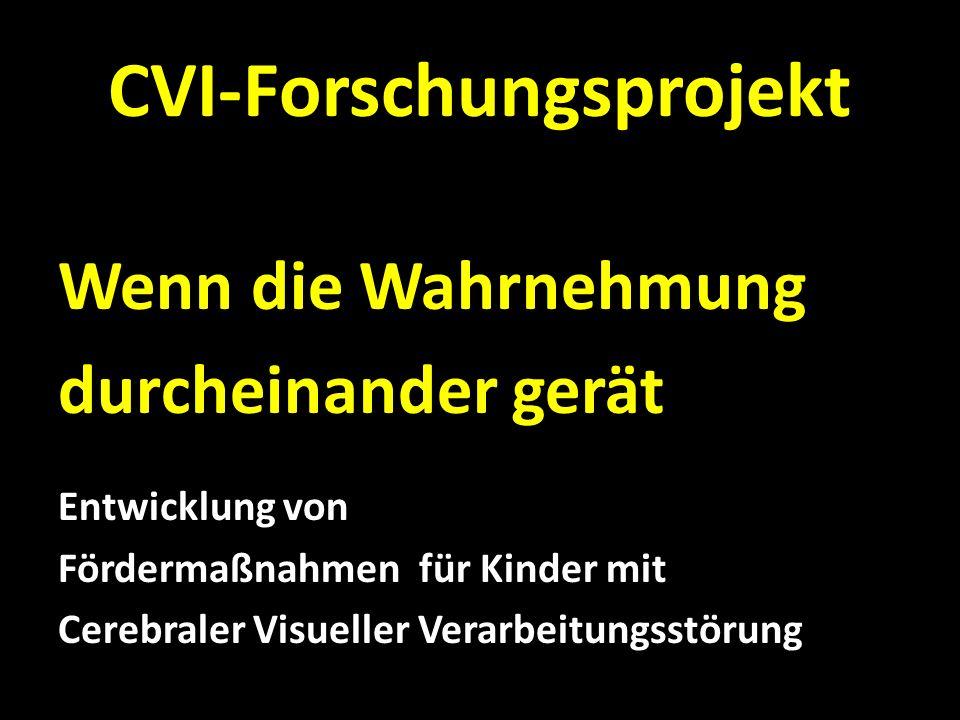 CVI-Forschungsprojekt FORSCHUNGSTEAM: G.Jaritz, B.