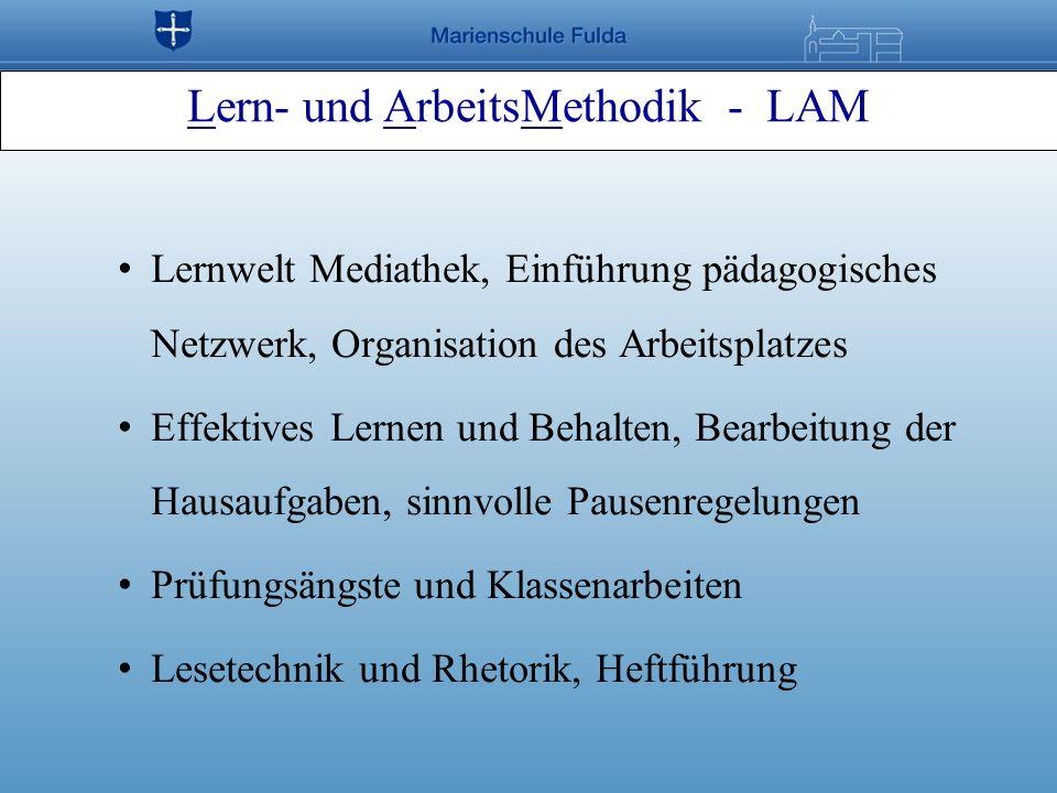 Lernwelt Mediathek, Einführung pädagogisches Netzwerk, Organisation des Arbeitsplatzes Effektives Lernen und Behalten, Bearbeitung der Hausaufgaben, s