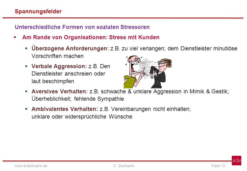 Spannungsfelder www.tcdormann.de C. DormannFolie 13 Unterschiedliche Formen von sozialen Stressoren Am Rande von Organisationen: Stress mit Kunden Übe
