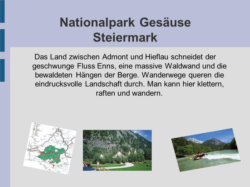 Nationalpark Gesäuse Steiermark Das Land zwischen Admont und Hieflau schneidet der geschwunge Fluss Enns, eine massive Waldwand und die bewaldeten Hän