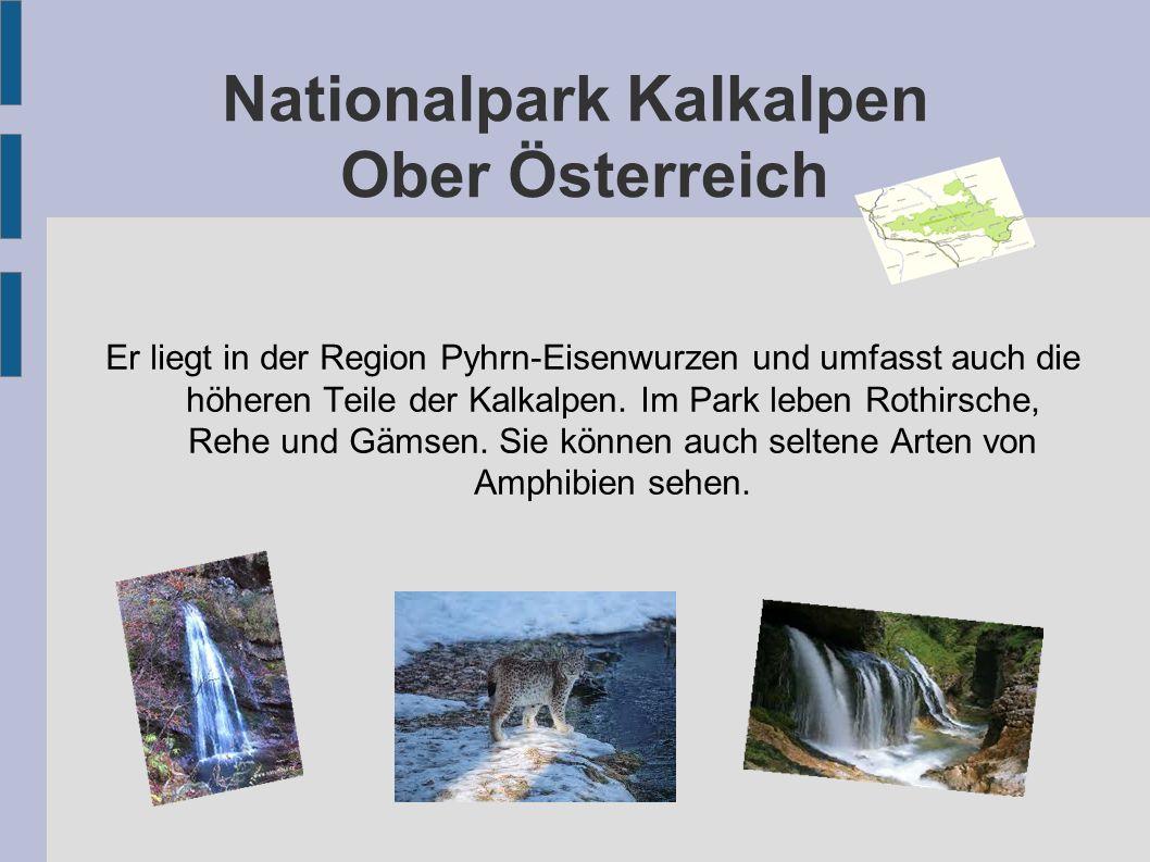 Nationalpark Kalkalpen Ober Österreich Er liegt in der Region Pyhrn-Eisenwurzen und umfasst auch die höheren Teile der Kalkalpen. Im Park leben Rothir