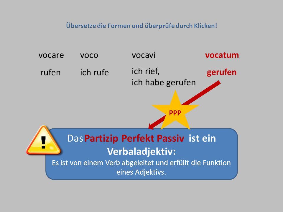 Das Partizip Perfekt Passiv ist ein Verbaladjektiv: Es ist von einem Verb abgeleitet und erfüllt die Funktion eines Adjektivs. vocarevocovocavivocatum