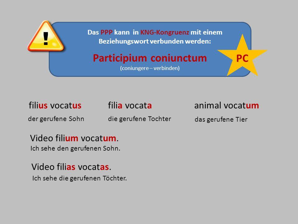 Participium coniunctum (coniungere – verbinden) Das PPP kann in KNG-Kongruenz mit einem Beziehungswort verbunden werden: PC filius vocatusfilia vocata