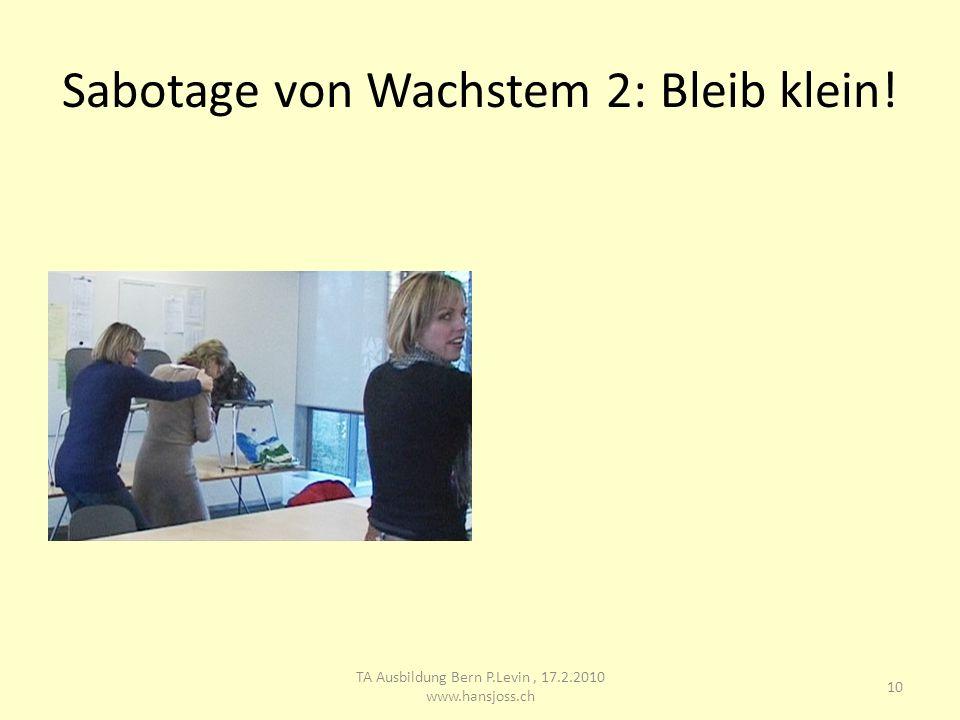 Sabotage von Wachstem 2: Bleib klein! 10 TA Ausbildung Bern P.Levin, 17.2.2010 www.hansjoss.ch
