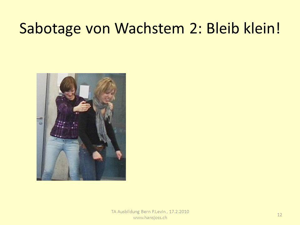 Sabotage von Wachstem 2: Bleib klein! 12 TA Ausbildung Bern P.Levin, 17.2.2010 www.hansjoss.ch