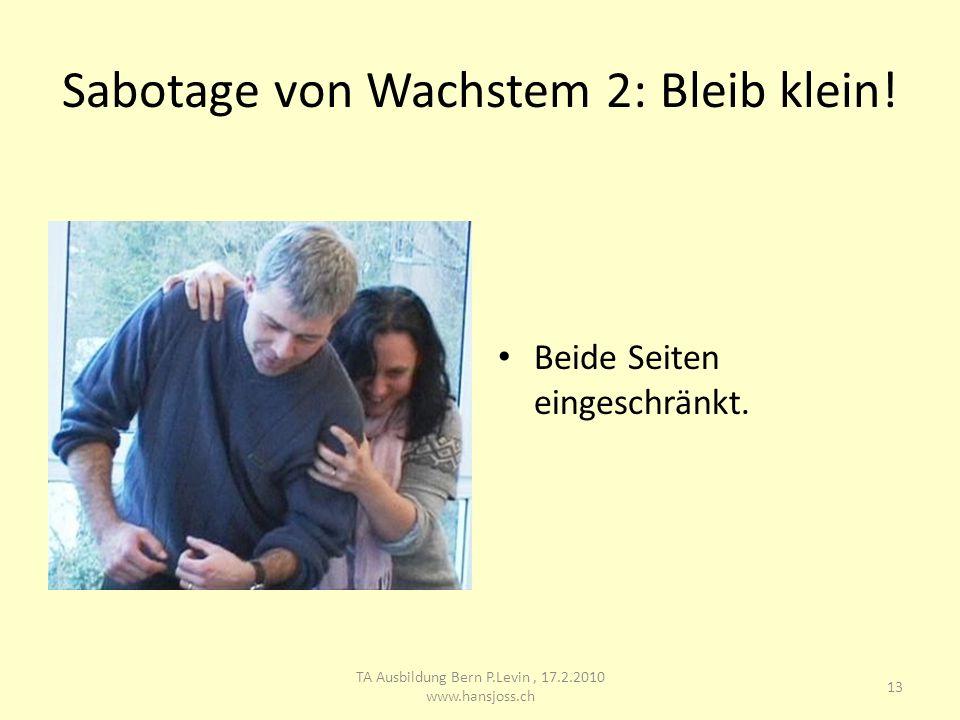 Sabotage von Wachstem 2: Bleib klein! Beide Seiten eingeschränkt. 13 TA Ausbildung Bern P.Levin, 17.2.2010 www.hansjoss.ch