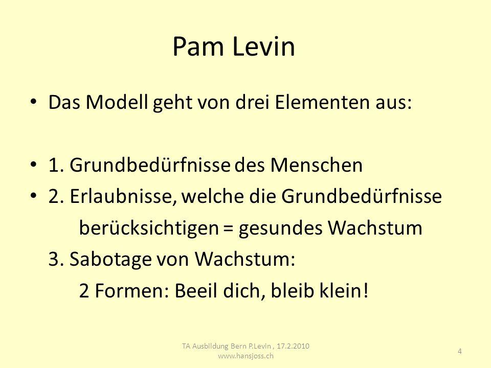 Pam Levin Das Modell geht von drei Elementen aus: 1. Grundbedürfnisse des Menschen 2. Erlaubnisse, welche die Grundbedürfnisse berücksichtigen = gesun
