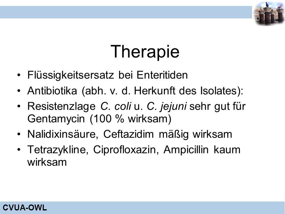 CVUA-OWL Therapie Flüssigkeitsersatz bei Enteritiden Antibiotika (abh. v. d. Herkunft des Isolates): Resistenzlage C. coli u. C. jejuni sehr gut für G