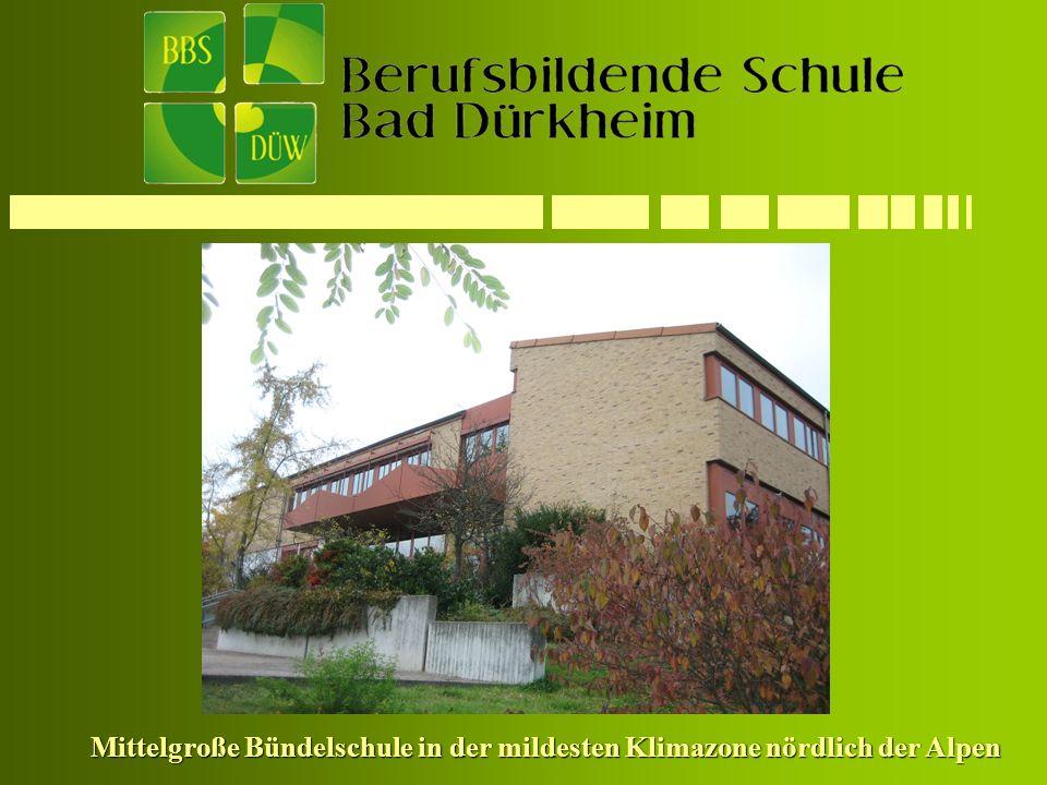 Mittelgroße Bündelschule in der mildesten Klimazone nördlich der Alpen Mittelgroße Bündelschule in der mildesten Klimazone nördlich der Alpen
