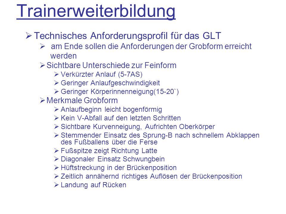 Technisches Anforderungsprofil für das GLT am Ende sollen die Anforderungen der Grobform erreicht werden Sichtbare Unterschiede zur Feinform Verkürzte