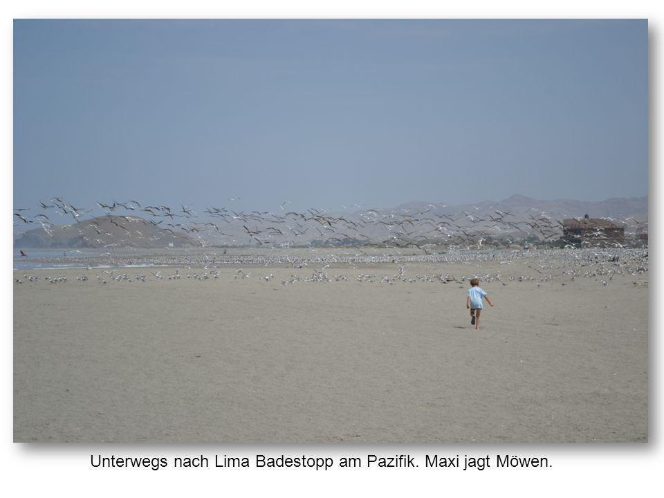 Unterwegs nach Lima Badestopp am Pazifik. Maxi jagt Möwen.