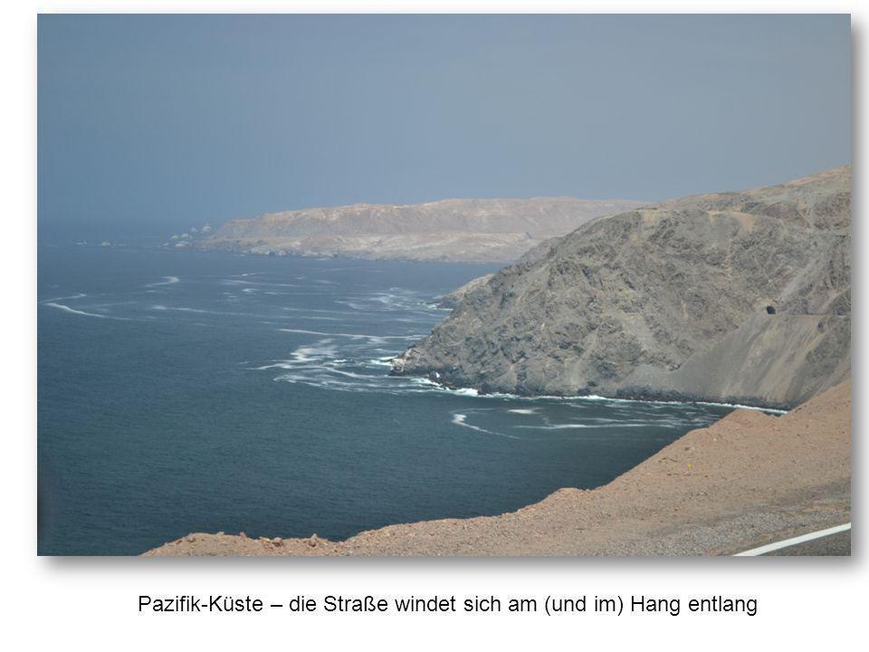 Pazifik-Küste – die Straße windet sich am (und im) Hang entlang