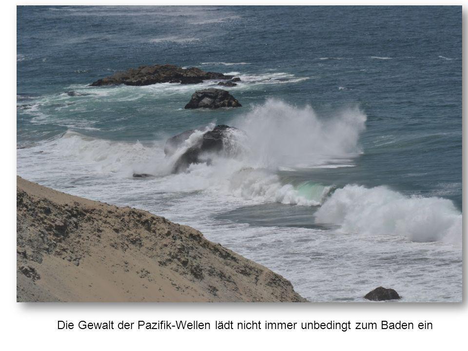 Die Gewalt der Pazifik-Wellen lädt nicht immer unbedingt zum Baden ein