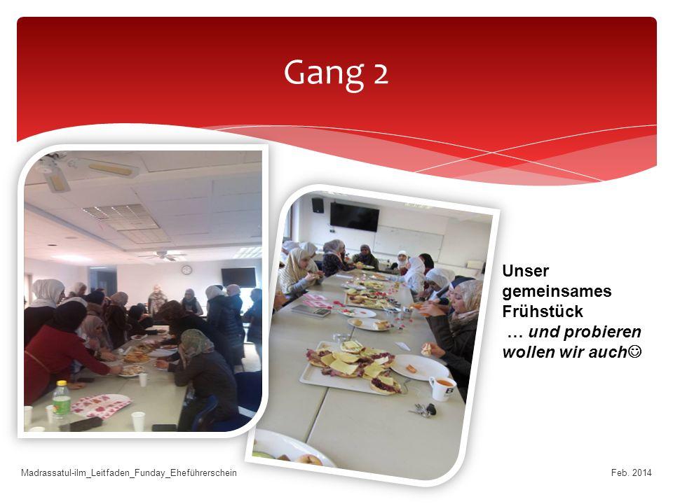 Gang 2 Feb.
