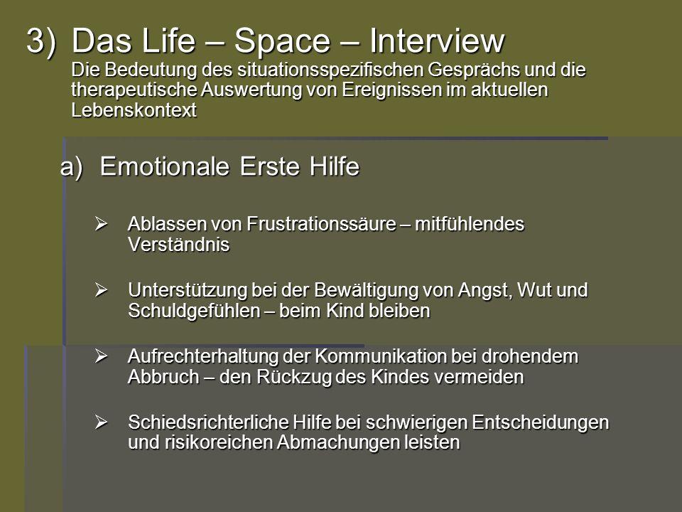 3)Das Life – Space – Interview Die Bedeutung des situationsspezifischen Gesprächs und die therapeutische Auswertung von Ereignissen im aktuellen Leben