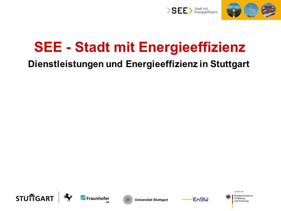 SEE- Stadt mit Energieeffizienz, Sanierungsdienstleistungen und Contracting SEE - Stadt mit Energieeffizienz Dienstleistungen und Energieeffizienz in