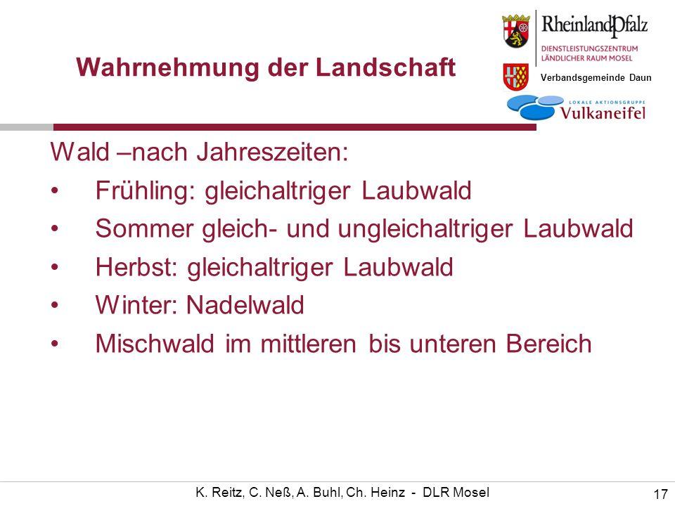 Verbandsgemeinde Daun 17 K. Reitz, C. Neß, A. Buhl, Ch. Heinz - DLR Mosel Wahrnehmung der Landschaft Wald –nach Jahreszeiten: Frühling: gleichaltriger