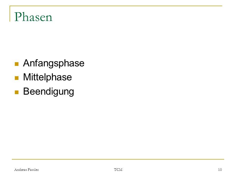 Andreas Fassler TCM 10 Phasen Anfangsphase Mittelphase Beendigung