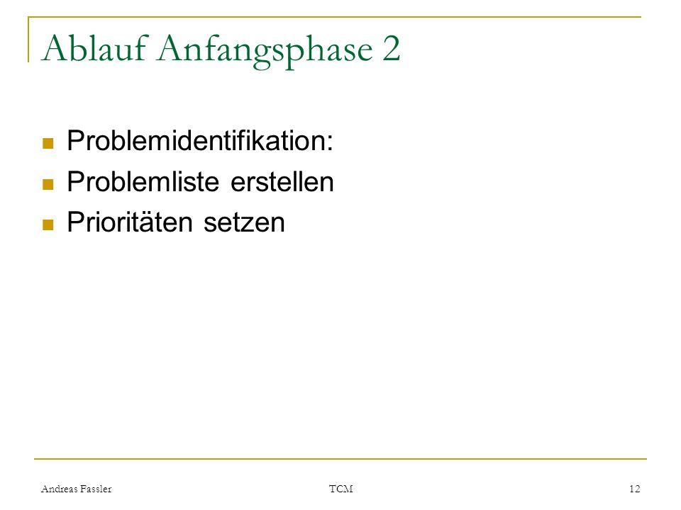 Andreas Fassler TCM 12 Ablauf Anfangsphase 2 Problemidentifikation: Problemliste erstellen Prioritäten setzen