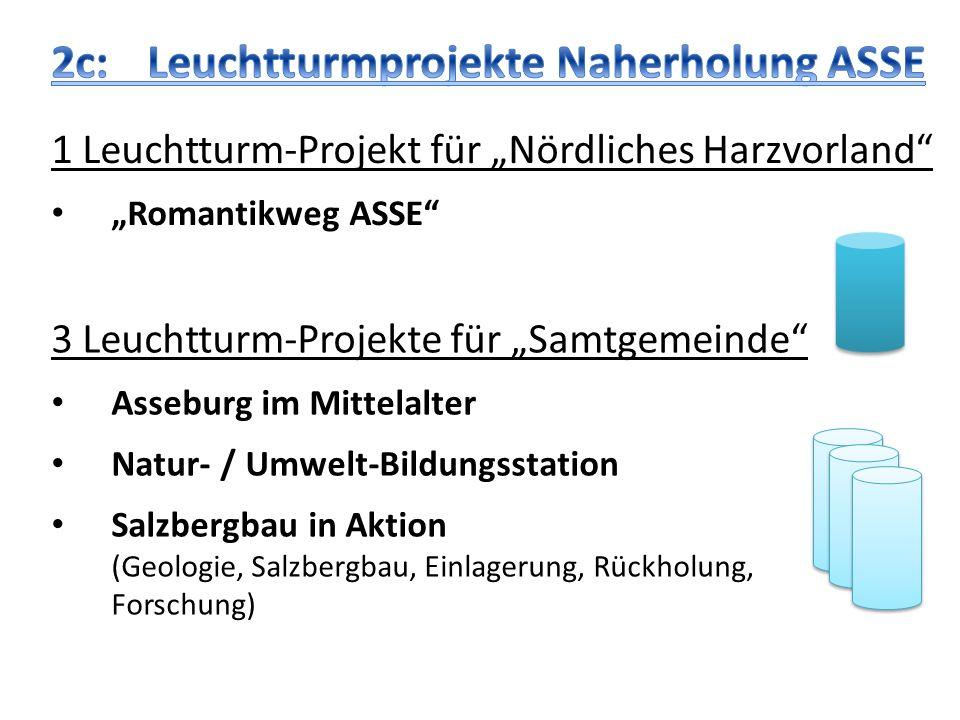 3 Leuchtturm-Projekte für Samtgemeinde Asseburg im Mittelalter Natur- / Umwelt-Bildungsstation Salzbergbau in Aktion (Geologie, Salzbergbau, Einlageru