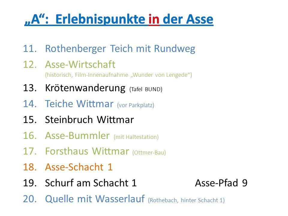 11.Rothenberger Teich mit Rundweg 12.Asse-Wirtschaft (historisch, Film-Innenaufnahme Wunder von Lengede) 13.Krötenwanderung (Tafel BUND) 14.Teiche Wit
