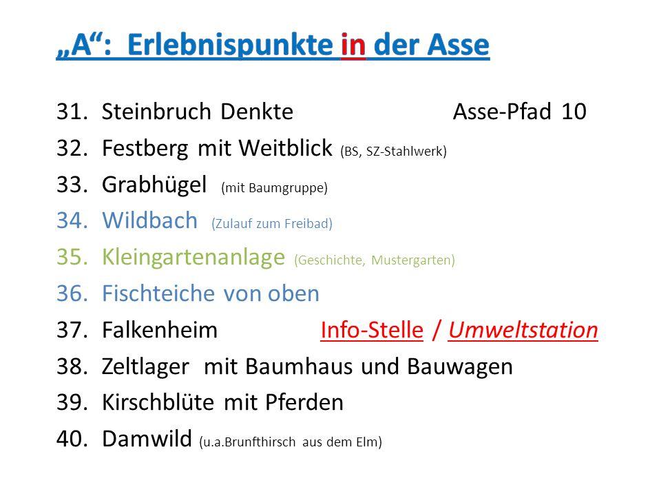 31.Steinbruch DenkteAsse-Pfad 10 32.Festberg mit Weitblick (BS, SZ-Stahlwerk) 33.Grabhügel (mit Baumgruppe) 34.Wildbach (Zulauf zum Freibad) 35.Kleing