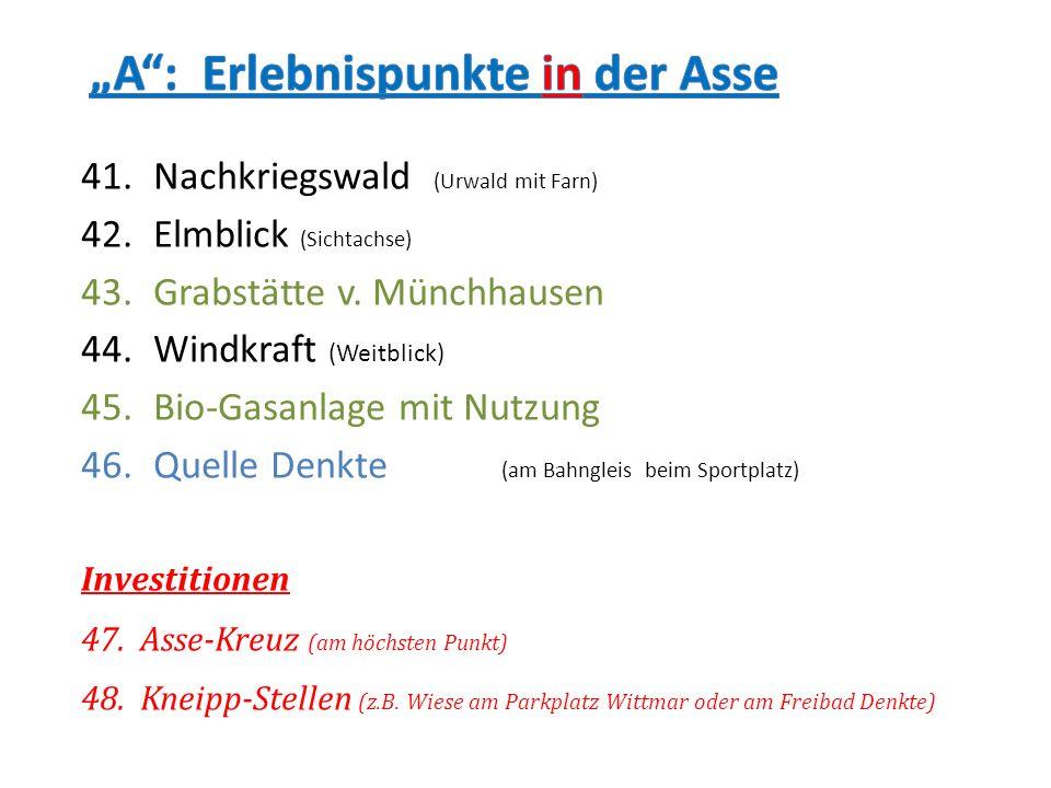 41.Nachkriegswald (Urwald mit Farn) 42.Elmblick (Sichtachse) 43.Grabstätte v. Münchhausen 44.Windkraft (Weitblick) 45.Bio-Gasanlage mit Nutzung 46.Que