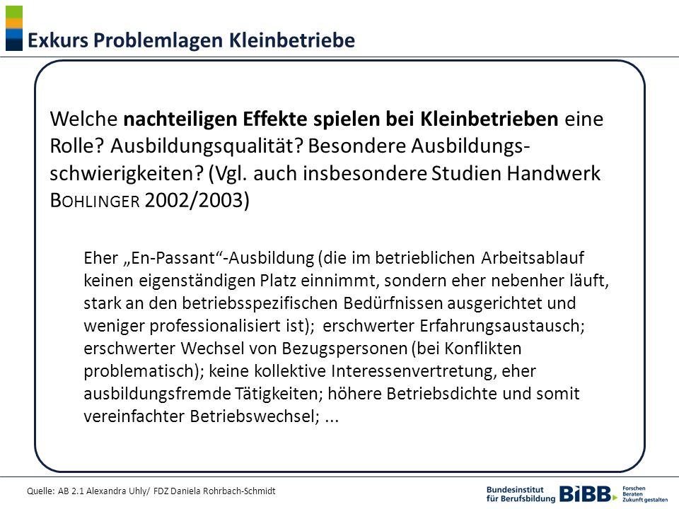 Quelle: AB 2.1 Alexandra Uhly/ FDZ Daniela Rohrbach-Schmidt Exkurs Problemlagen Kleinbetriebe Welche nachteiligen Effekte spielen bei Kleinbetrieben e