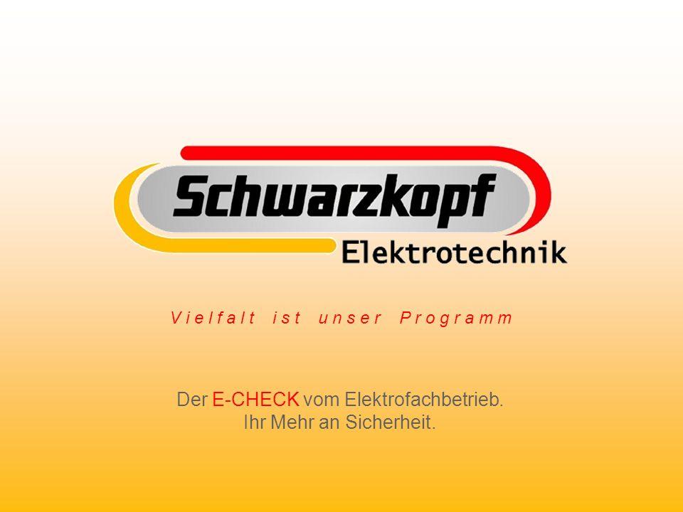 V i e l f a l t i s t u n s e r P r o g r a m m Der E-CHECK vom Elektrofachbetrieb. Ihr Mehr an Sicherheit.