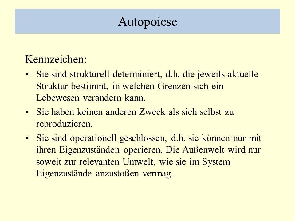 Autopoiese Kennzeichen: Sie sind strukturell determiniert, d.h. die jeweils aktuelle Struktur bestimmt, in welchen Grenzen sich ein Lebewesen veränder