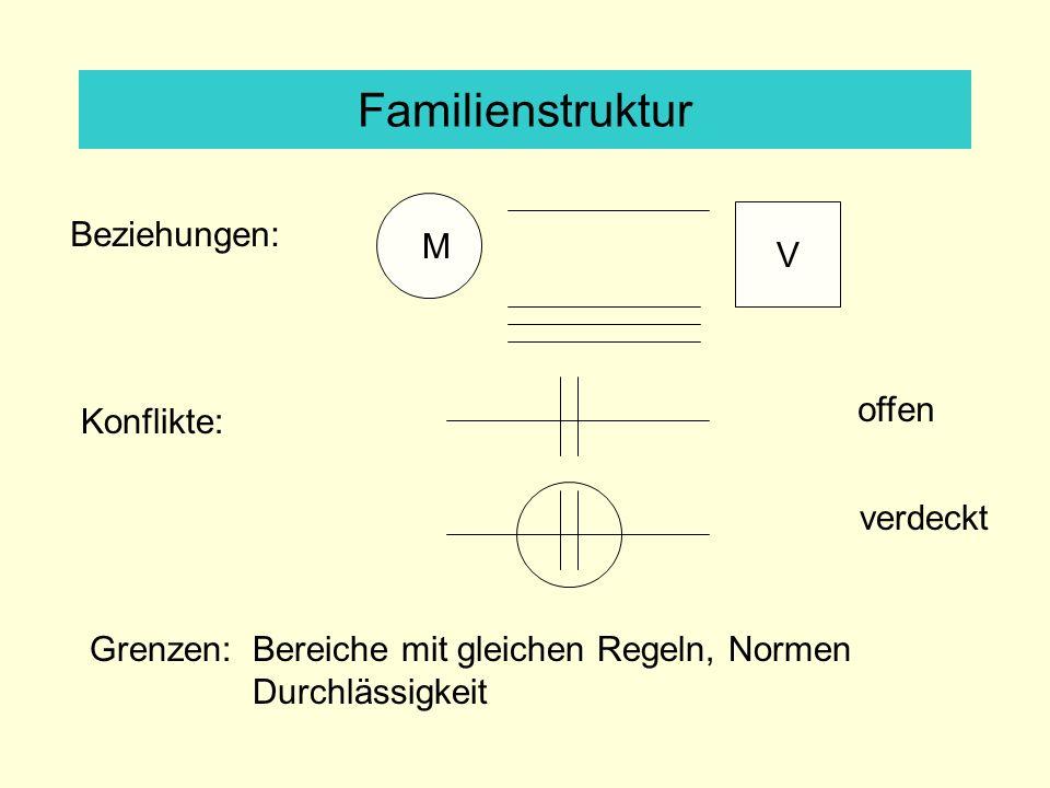 Familienstruktur V M Beziehungen: Konflikte: offen verdeckt Grenzen: Bereiche mit gleichen Regeln, Normen Durchlässigkeit
