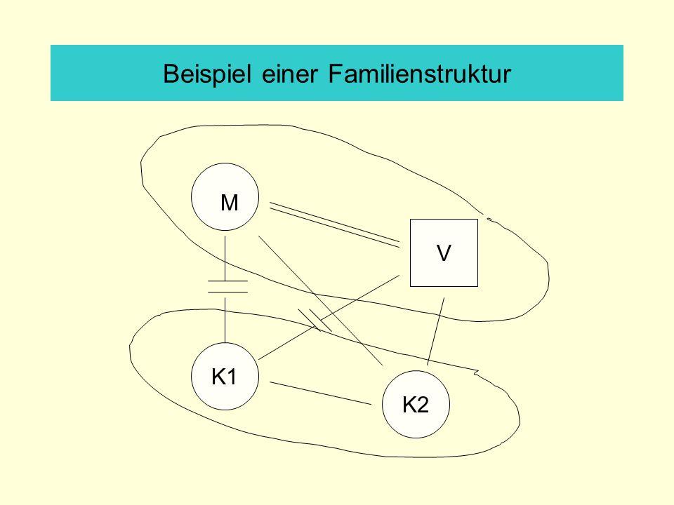 Beispiel einer Familienstruktur V K1 K2 M